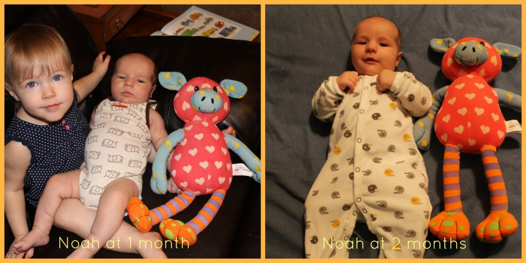 Plumfield Dreams: Noah Months 1 and 2