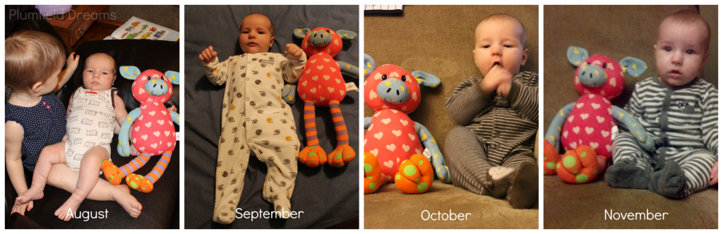 Noah 4 Months ~ Plumfield Dreams