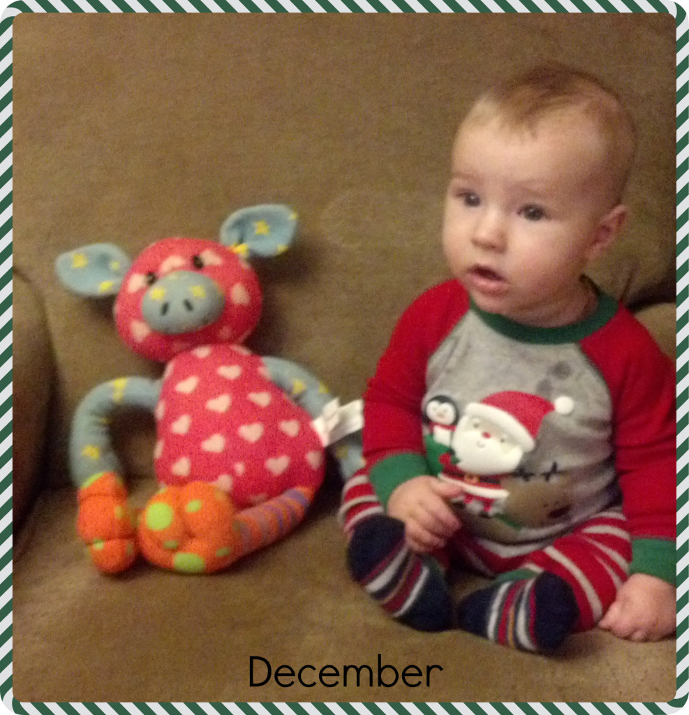 Noah 5 Months ~ Plumfield Dreams